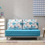 Spezielles Functinal Gewebe-Sofa-Bett für Wohnzimmer