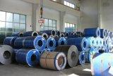 Ранг PPGI Dx 51d Pre-Painted гальванизированный стальной строительный материал катушки от Shandong Китая