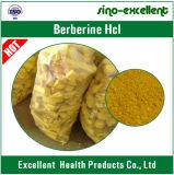 Polvo el 97% el 98% del ácido clorhídrico de Berberine del extracto del rizoma de Picrorhiza