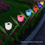 Lumière colorée actionnée solaire de fleur de jardin (RS101)