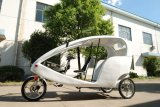 Selling quente China Manufature Electric Tricycle em High Configuration (JB500DQZK)