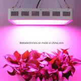 Lo spettro completo all'ingrosso 300W LED si sviluppa chiaro con una garanzia da 3 anni