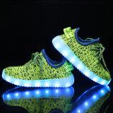Il LED illumina in su il verde degli uomini degli addestratori