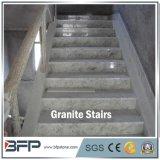Impronta bianca reale elegante del granito G853 per le mattonelle interne di punto del pavimento in villa