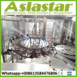 automatischer Wasser-Füllmaschine-kompletter Produktionszweig der Flaschen-6000bph