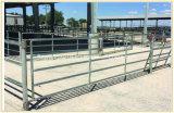 위원회/문 가축 담을 검술해 최신 담궈진 직류 전기를 통한 가축