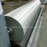 Tissu nomade tissé par fibres de verre Ewr200 d'E-Glace