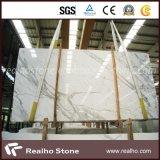 Plak van de Steen van Italië de Witte Marmeren Witte Marmeren voor Muur/Bevloering/Countertop