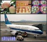Serviço de transporte do ar de China a Venezuela/Colômbia/Chile/Bolívia/Equador /Peru