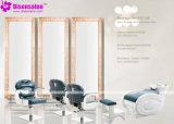 De populaire Stoel Van uitstekende kwaliteit van de Salon van de Stoel van de Kapper van de Spiegel van de Salon (P2019F)
