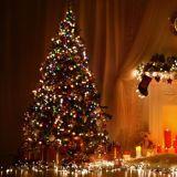 크리스마스 RGB SMD LED 테이프 유연한 지구 빛 12V