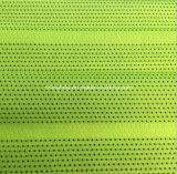 عصفور عيينة بوليستر [سبندإكس] يحبك بناء لأنّ [كسولور] ([هد2211237])