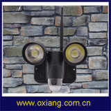 Wireless WiFi Lights Camera for Security avec LED Floodlight