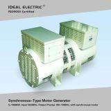 5kw 50-400Hz Frequenzumsetzer (schwanzloser synchroner elektrischer Motorgenerator eingestellt)