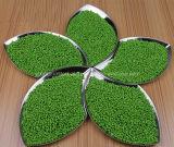 Masterbatch preto para compostos plásticos da cor verde de Masterbatch da cor da alta qualidade de PA/PC/EVA/PE/PP/ABS/Pet