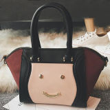 Signora Leather Handbag Sy7913 di tendenza delle donne del sacchetto di mano di sorriso