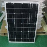Migliore mono comitato solare di prezzi 50wp 55W 60W di vendita calda