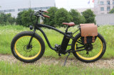 Cer-Bescheinigungs-heißer Verkaufs-elektrisches Fahrrad mit fetter Option des Gummireifen-36V/48V 350With500With750W