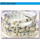 2700-6500k SMD 2835 600LEDs LED 지구 램프