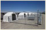一時パネルを囲う電流を通された金属のLivestcckの塀のパネルか牛ヤード