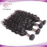 Do Virgin brasileiro natural da onda da companhia do cabelo humano cabelo humano de Remy