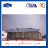 Zaal Refrigeraton, Gekoelde Zaal, Koelere Vorst van het Gordijn van de lucht de Grote Koude