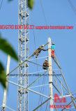 Torretta della trasmissione della sospensione di Meagtro 800kv 8A3 Zc1