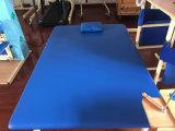 Vector de la terapia física del equipo de la rehabilitación