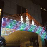 Doppeltes buntes Zeichenkette-Licht des Farben-Weihnachtenled