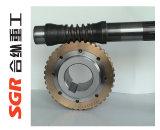 Scatola ingranaggi della vite senza fine del cono del Coppia di torsione-Braccio dell'Vuoto-Asta cilindrica/riduttore di velocità