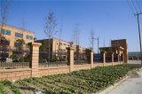 Frontière de sécurité résidentielle 3 de jardin de garantie noire décorative élégante de haute qualité de Haohan