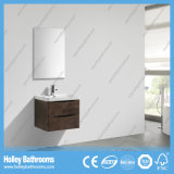 Cabina de cuarto de baño popular de la melamina del diseño con dos cajones