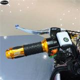 biciclette elettriche 48V-350W con Ce approvato (CW-26)