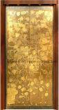 De decoratieve Decoratie van het Comité van de Deur van de Lift van het Roestvrij staal van de Ets