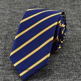 Cravate en soie des affaires des hommes neuf personnalisés pour GWP (HWN01)