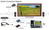 Indicador de diodo emissor de luz interno elevado de Digitas SMD do brilho