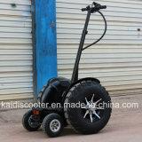 4개의 바퀴 전기 스쿠터 뚱뚱한 타이어 48V 12ah 700W