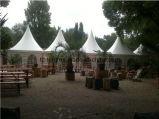 Freier Gazebo-Garten-im Freien kampierendes Zelt