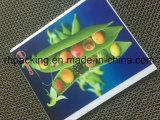 Één Raad van de Serigrafie Printing/3mm/4mm/5mm/6mm pp Coroplast Corflute Correx van de Kleur voor Signage