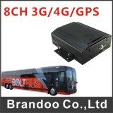 H. 264 автомобиль DVR канала GPS+3G HD обнаружения 8 движения DVR передвижной с водяной знак Bd-308wg цифров