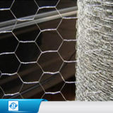 六角形の金網か六角形ワイヤー網またはGabionの網のケージ