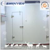 Комната замораживателя/комната холодильных установок для сбывания