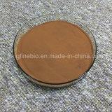 [1 - etilo (Dimethylamino)] fenol 3 CAS 105601-04-5