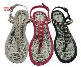 Сандалии самого последнего PVC ботинок и кувырка тапочек повелительниц