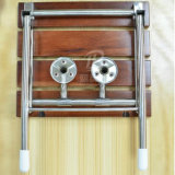De houten Zetel die van de Douche van de Versterking van de Muur van de Badkamers Dik makende de Stoel van de Doorgang van de Kruk vouwt