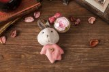 Ivenran bewaarde het Verse Roze Konijn Keychain van de Bloem voor Gift en Decoratie