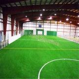 Edificio de interior del campo de fútbol de la estructura del metal para la venta