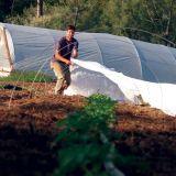 Cultivo cubra polipropileno Spun servidumbre no Tejidos de UV estabilizado