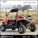 2개의 시트 2WD 또는 4WD 4X4를 가진 UTV 2000W/72V/51ah 전기 UTV