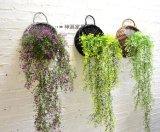 (BC-WF1004) Корзина цветка вербы высокого качества Handmade естественная